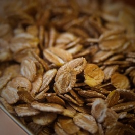 Flaked Barley (Unmalted)
